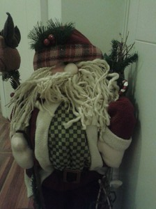 Fmff! Whut? Is it Christmas again already? I can't see out through this beard!