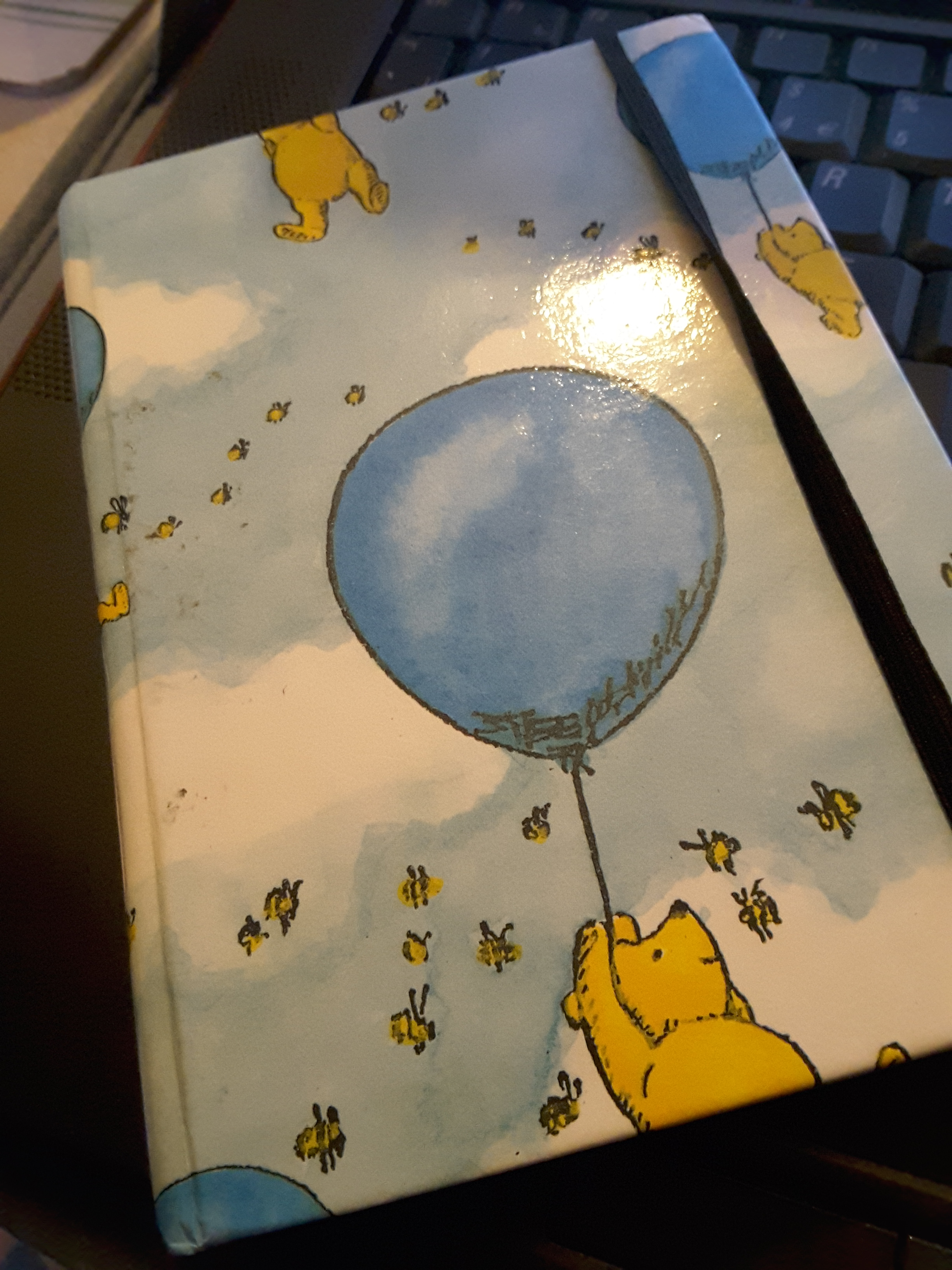 winnie-the-pooh-notebook
